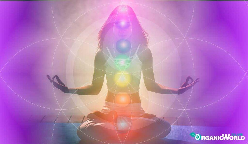 Yoga Reiki Flower of Life